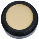 Catrice Camouflage krycí make-up odstín 020 Light Beige 3 g